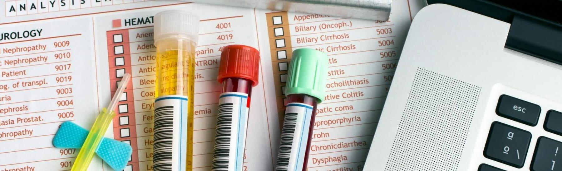 Cat Blood Test